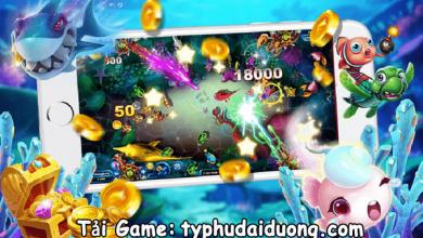 typhudaiduong